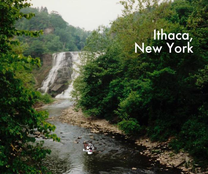 ITHACA_NY